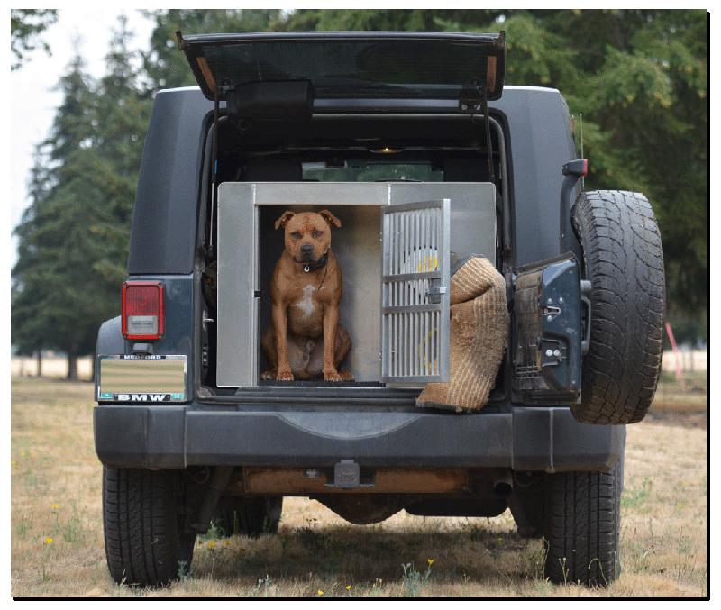 specialty aluminum dog crate aluminum dog crates dog crate police dog equipment